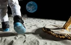 <p>Indian Scientists make space bricks for buildings on the Moon</p>