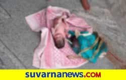 <p>ಕಲಬುರಗಿ ಜಿಲ್ಲೆಯ ಚಿಂಚೋಳಿ ತಾಲೂಕಿನ ರಟಕಲ್ ಗ್ರಾಮದಲ್ಲಿ ಶಿಶು ಪತ್ತೆ&nbsp;</p>
