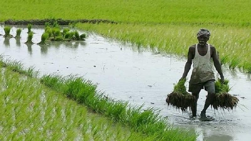 Despite the opposition's opposition, the Agriculture Bill will be presented in Rajya Sabha today