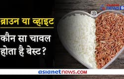 <p>rice</p>