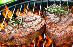 <p>grilled meat</p>