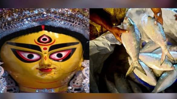 Bangladeshi hilsa is coming to Kolkata before Durga Pujo bpsb
