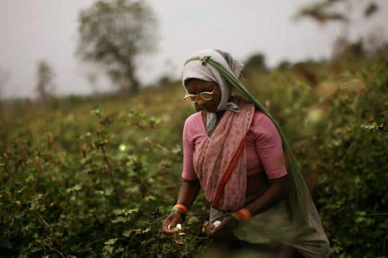 Farmers train is changing fortunes, consumers and farmers happy
