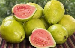 <p><strong>Guava: </strong>Crunchy, sweet and yummy, guavas are our personal favourite this season. They are loaded with vitamin C and a range of antioxidants that fight dangerous free radical activity and prevent cell damage. They are also high in fibres making it excellent for your heart and blood sugar level.</p>