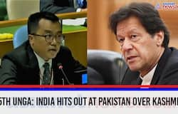 75th UNGA: India hits out at Pakistan over Kashmir