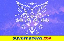 <p>capricorn astrology</p>