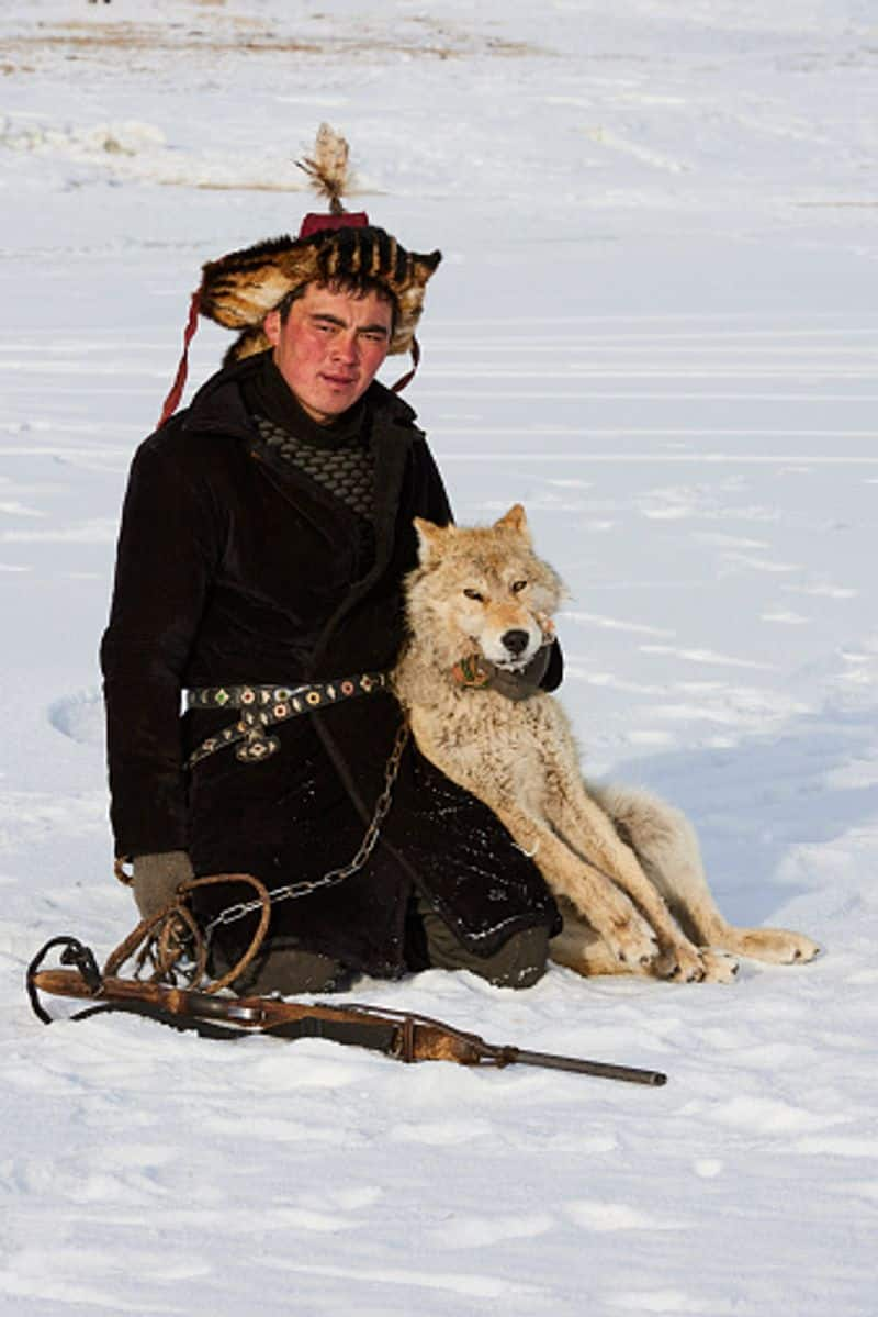 The Eagle hunter of Mongolia