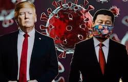 <p>Donald Trump and Xi Jinping</p>