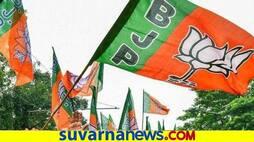 <p>BJP Flag</p>