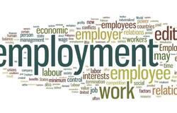 <p>employment</p>