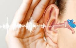 <p>hearing loss</p>