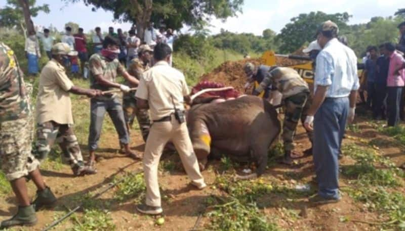 Karnataka to follow an ecologically sustainable model of disposing of elephant carcasses