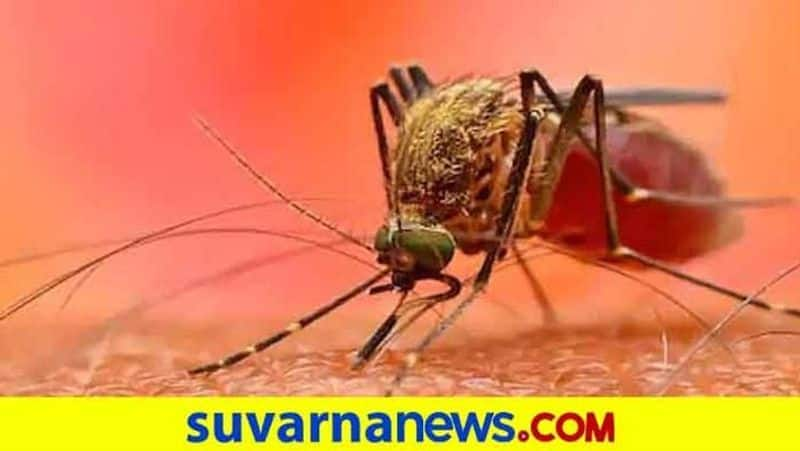 More Than 100 People Sick For Infectious Disease in Koppal grg