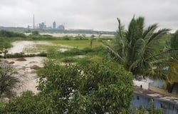 <p>At Raichur, due to heavy rains on Tuesday night, standing paddy crops have been destroyed.&nbsp;<br /> &nbsp;</p>