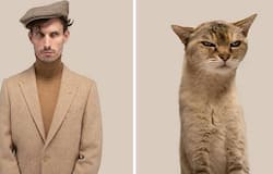 <p>Do You Look Like Your Cat</p>
