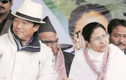 """<p>Bimal Gurung has also left the task of selecting candidates in Dooars to the TMC. He said, 'Let the TMC choose the candidate. Let them give good candidates. We will support.""""<br /> &nbsp;</p>"""