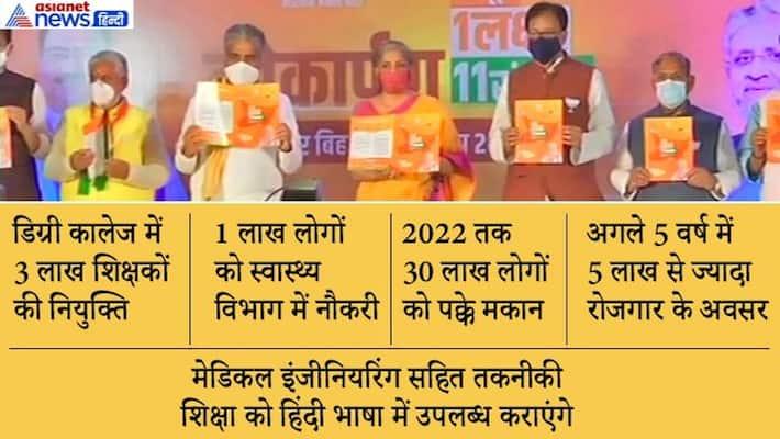 Bihar elections: BJP manifesto, these issues involved, Union Minister Nirmala Sitharaman asa