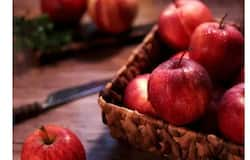 <p><strong>Apple: </strong>Apples are a great source of water and fiber that act as cleansing agents. It contains malic acid that boosts saliva production, hence removing bacteria from the mouth. The fibrous texture of apples also helps improve the health of your gums.<br /> &nbsp;</p>