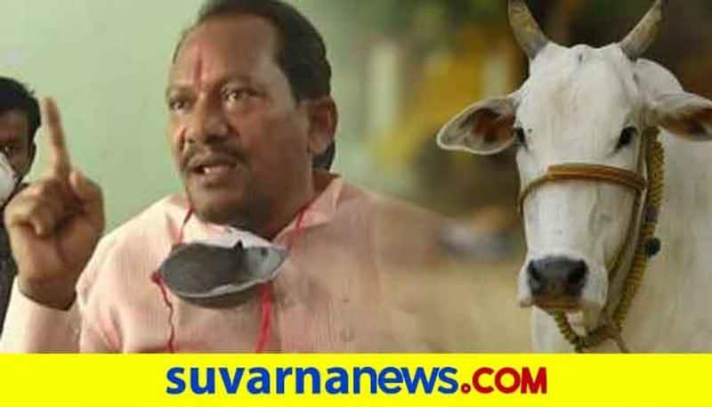 Vaccine to Livestock During Coronavirus in Karnataka Says Prabhu Chauhan grg