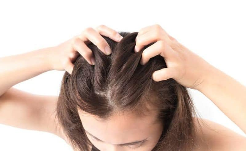 Scalp Problems: Recently people are experiencing boils on their scalp. This could well be due to the sudden heat wave and the best way to treat this is to rinse the hair with neem water. The rinse can be made by boiling a handful of neem leaves in one litre of water and letting it cool. After shampooing, rinse the hair with this mix. You could also apply fuller's earth mixed with cold milk if you have dry hair and leave it on for 15 minutes and then rinse. For those of you who have oily hair, mix the fuller's earth with yoghurt and apply on the scalp and hair.