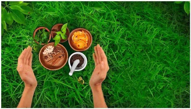 Indicating inclination for Ayurvedic products, IMPCL boasts turnover of Rs 164.33 crore