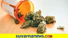 Two Arrested for Selling Drug in Bengaluru grg
