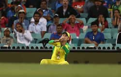 <p>Zampa Drops Kohli</p>