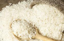 <p>भारत में ज्यादातर सफेद चावल का उपयोग होता है जिसमें बहुत कम पोषक तत्व और कार्बोहाइड्रेट की मात्रा बहुत ज्यादा होती है। चावल का अधिक सेवन शरीर में ब्लड शुगर को बढ़ाने का काम करता है।</p>