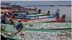 <p>fishing</p>
