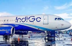 """<p><strong>IndiGo confirms December hacking</strong><br /> &nbsp;</p>  <p>Indian airline operator IndiGo said confirmed that some segments of its data servers were hacked earlier in December.<br /> &nbsp;</p>  <p>In a statement, IndiGo said: """"There is a possibility that some internal documents may get uploaded by the hackers on public websites and platforms. We realise the seriousness of the issue, and are continuing to engage with all relevant experts and law enforcement to ensure that the incident is investigated in detail""""</p>"""