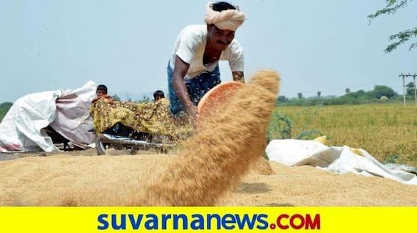 Farmers Fear About Covid  effects on  Agriculture  Field snr