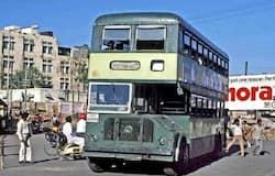 <p>double decker buses</p>