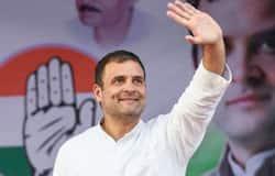 <p><b>rahul gandhi</b></p>