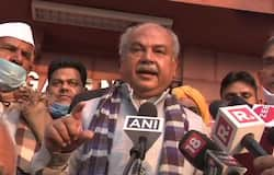 <p>Agriculture Minister Narendra Singh Tomar, Narendra Singh Tomar, farmer protests, protests</p>