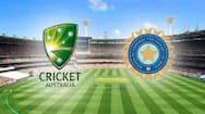cricket australia convey their gratitude to bcci for sent austrlaian players safely