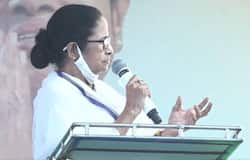 <p>He said that there is no development happening in West Bengal after the TMC government came into power. The state is drifting from the path of progress.</p>