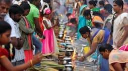 <p>pongal festival</p>