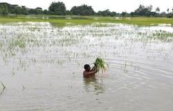 <p>agriculture rain&nbsp;</p>