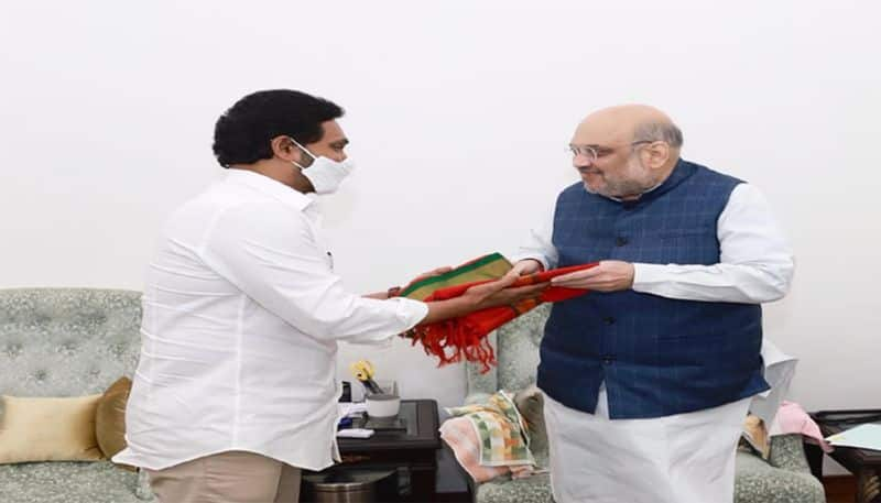 AP CM YS Jagan Meeting With Union Home Minister Amit Shah