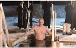 <p>Putin</p>