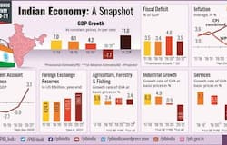 <p>This strong V-shaped recovery of economic activity is further confirmed in the IIP data.&nbsp;<br /> &nbsp;</p>  <p>According to the Economic Survey, the recovery is expected to be just the beginning of a strong era of economic growth of India.</p>