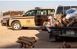 <p>saudi firewood</p>