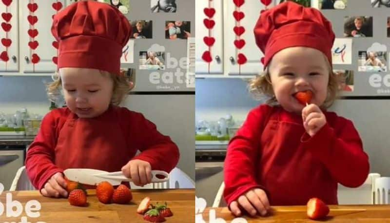 little chef kobe s valentines day special cooking video viral
