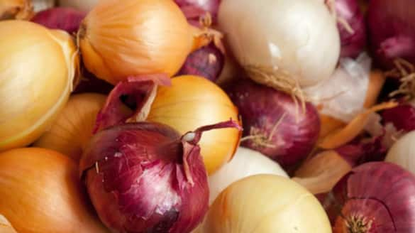 salmonella outbreak in usa administration is cautious about onions bsm