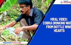 Viral video: Cobra drinking water from bottle wins hearts