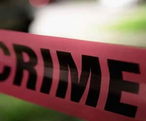 Woman stabbed 20 times, molested, dies in Delhi