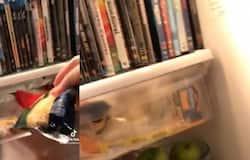 <p>dvd fridge</p>