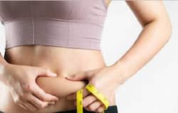 <p>belly fat</p>