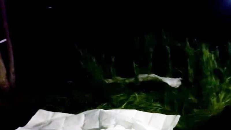 ಇನ್ನು ಬಾಲಕಿ ತನ್ನನ್ನು ತಾನು ರಕ್ಷಿಸಲು ಯತ್ನಿಸಿದ್ದಾಳೆ, ಆದರೆ ಸಾಧ್ಯವಾಗಿಲ್ಲ. ಬಾಲಕಿ ಕಿರುಚಾಡಲು ಯತ್ನಿಸಿದಾಗ ಆರೋಪಿ ಆಕೆಯ ಮುಖವನ್ನು ಅದುಮಿದ್ದಾನೆ. ಅಲ್ಲದೇ ಶಾಲಿನಿಂದ ಆಕೆಯ ಕತ್ತು ಹಿಸುಕಿ ಸಾಯಿಸಿದ್ದಾನೆ ಎಂದಿದ್ದಾರೆ ಪೊಲೀಸರು.