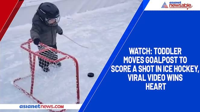 Watch Toddler moves goalpost to score a shot in ice hockey, viral video wins heart-TGY